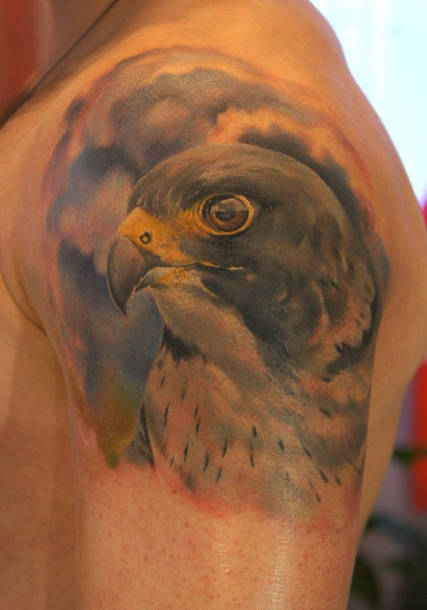... falcon by grimmy3d peregrine falcon tattoo by grimmy3d tattoo