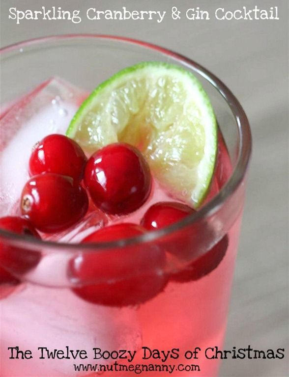 Nutmeg Nanny: Sparkling Cranberry & Gin Cocktail