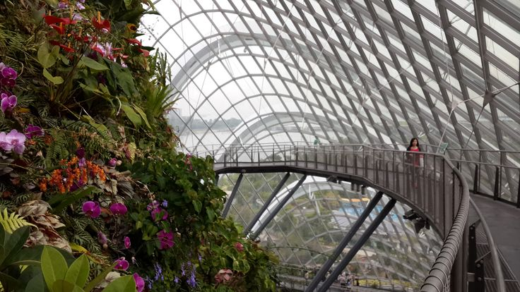 Cloud Forest in Singapore <3