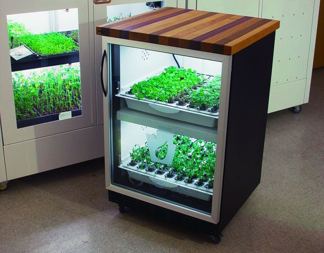 594 Best Hydro Images On Pinterest | Hydroponic Gardening, Fish Farming And  Hydroponics