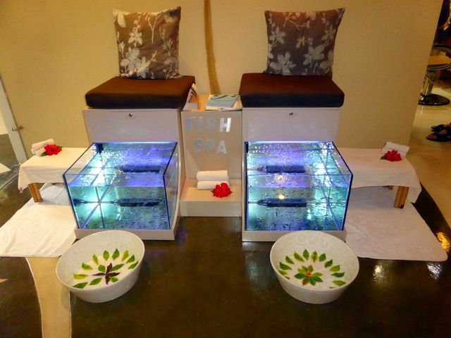24 best images about fish spa on pinterest sparkle for 24 hr nail salon nyc