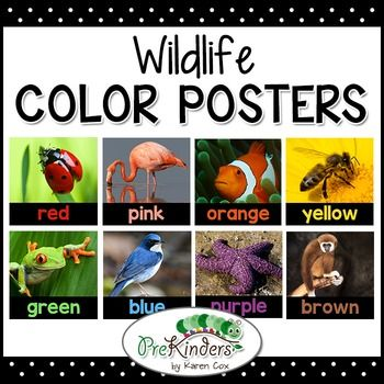 Wildlife Color Posters - decorate your classroom or Science Center
