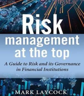 what is risk management in business pdf