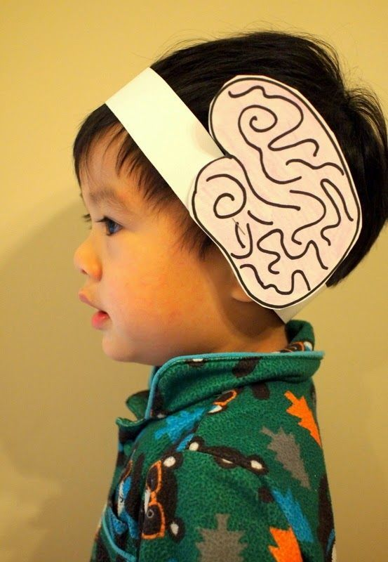 OMG I love this!!!! Let's learn about the brain! Make a brain headband