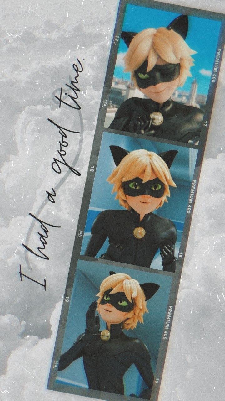 100 Wallpapers As I Promised In 2021 Miraculous Ladybug Wallpaper Miraculous Wallpaper Miraculous Ladybug Anime