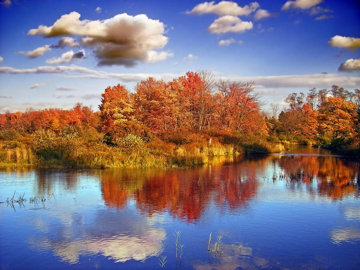 49 best Fall in Pennsylvania images on Pinterest ...
