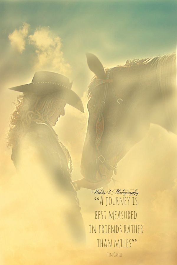 Quotes About A Girl And Her Horse Google Search Family
