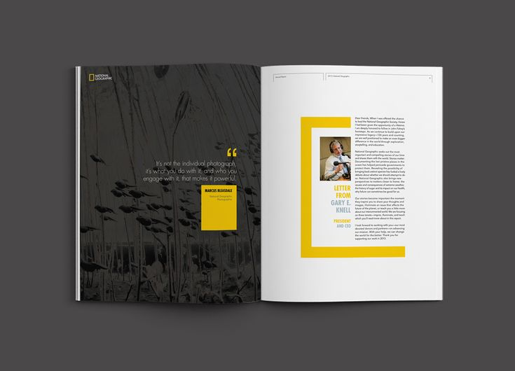 National Geographic Annual Report, 2015. This piece of work was created for layout design and graphic design practices, following the main concept which was appropriated to the company's identity and contents.