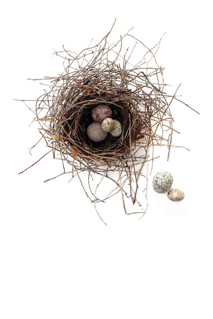 nest with stone eggs (mary jo hoffman)