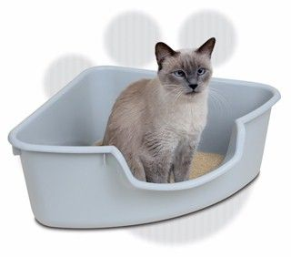 Reduce litter box smells by pouring white vinegar in the bottom of the empty litter tray between litter changes.  Let sit for 20 minutes before emptying and allowing to dry, then add new litter