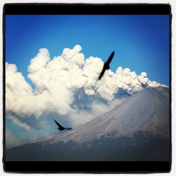 Emite Popocatépetl constante fumarola desde hace una hora. #InstagramMilenio   Foto: @lobatofotopro