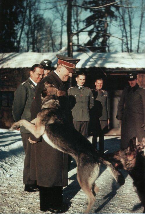 Adolf Hitler accompanied by his high-ranking SS leaders, alongside them, leaders of the Wehrmacht enjoy the company of others during the leisurely German afternoon. That is until Blondi runs in and pounces upon Hitler to show her rather rough affection, while all the others enjoy a laugh at the site.