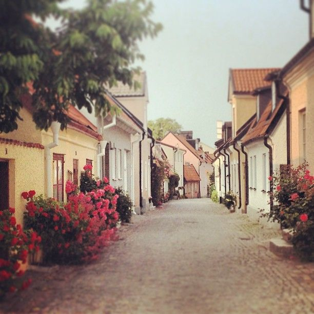 Gamla Visby in Visby, Gotland, Sweden.  One of the best preserved old towns ever. Visiting during the yearly medieval week with all it's events and admirable amount of partaking people is most advised.