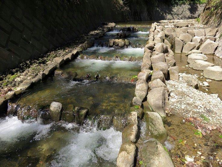 神奈川県横須賀市 前田橋遊歩道