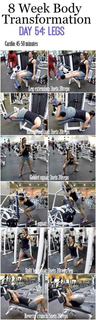 8 Week Body Transformation (Week 8, Day 54: Legs)