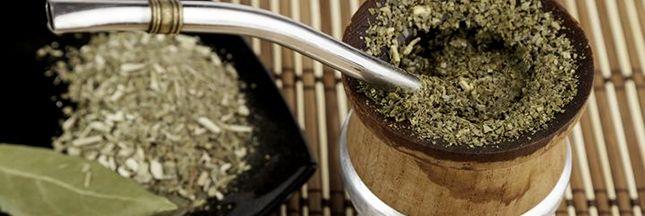 Le maté, ou yerba maté, est la boisson chaude préférée d'Amérique du Sud. Peu connue chez nous, elle est énergisante et riche en vitamines et minéraux.
