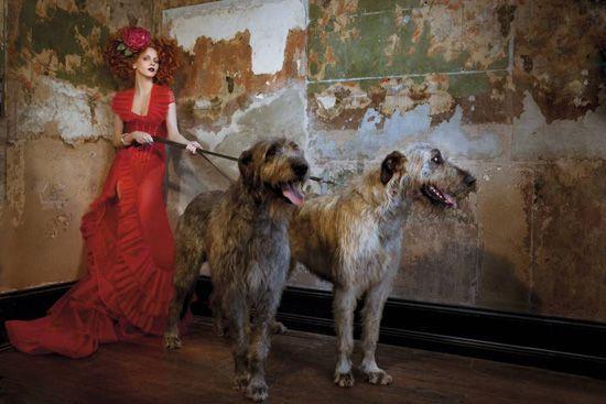 glamStrand Arcade, Fashion Models, Irish Wolfhounds, Autumnwint 2011, The Dresses, Fairyte Fashion, Fashion Women, Editorial Fashion, Arcade Fashion