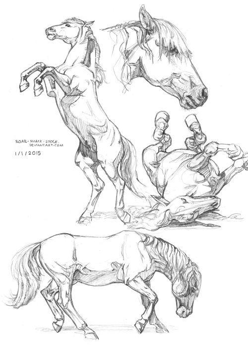 """blakealexanderdowning: """"Ich war sehr angespannt und konnte mich auf nichts konzentrieren. Deshalb habe ich Pferde gemalt, um mich zu entspannen. Ich wollte mich heute mehr herausfordern, ra …"""