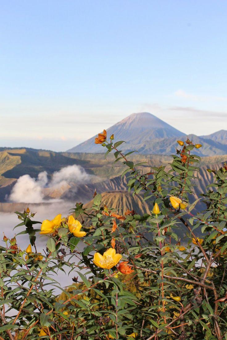 Mount Bromo, East Java, Indonesia, volcano #VirtualTourist