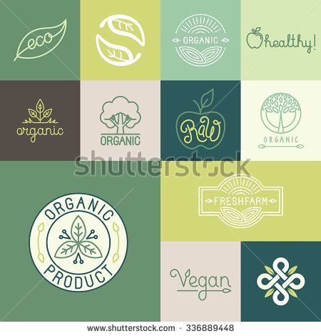 Vector set of natural, organic, vegan badges and logo design templates in trendy linear and flat style - collection of design elements, icons and emblems for fresh and healthy products - stock vector