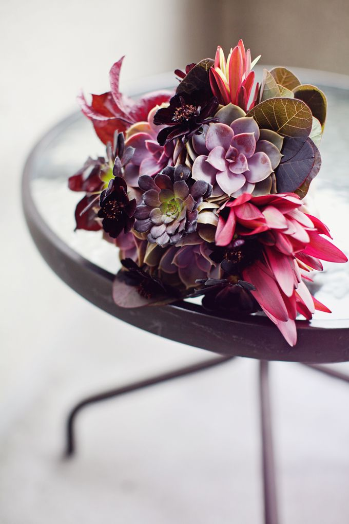 Floral arrangement by Flora Grubb. Smokebrush foliage, cholate cosmos, leucadendro 'jester', echeveria 'perle von nurenberg' and the dark aeonium 'shwarzkopf'.
