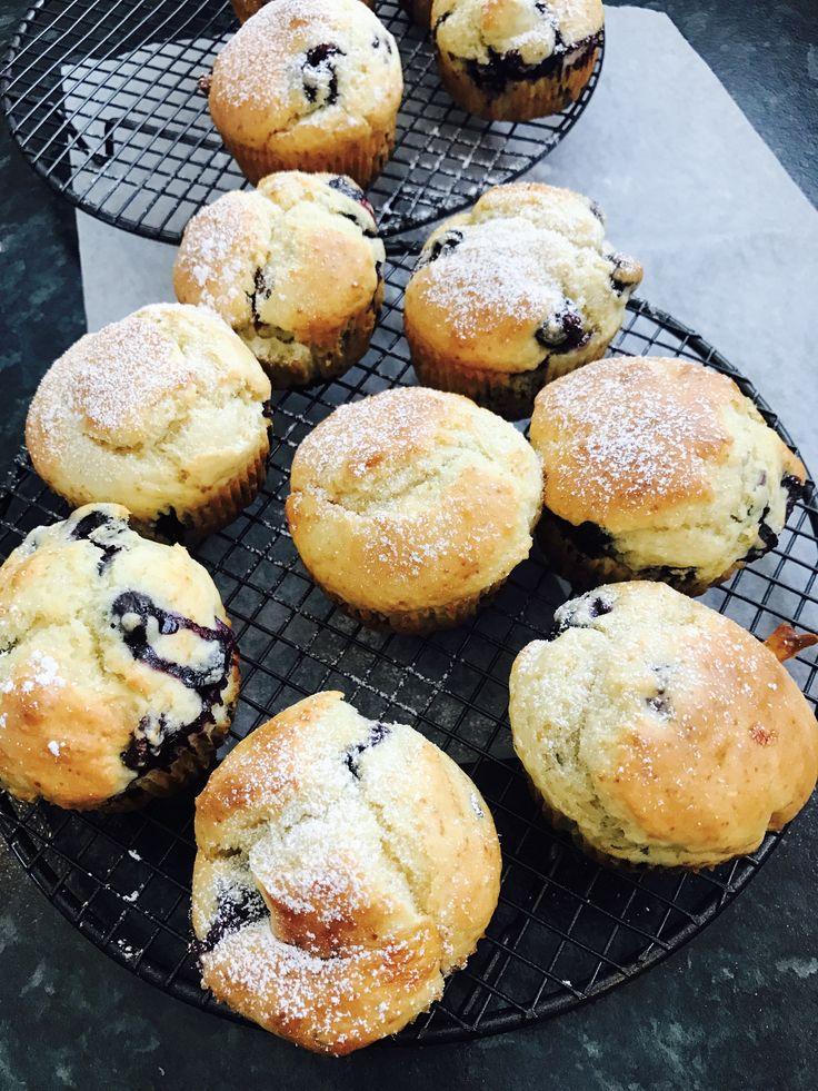 Fresh blueberry low sugar light muffins