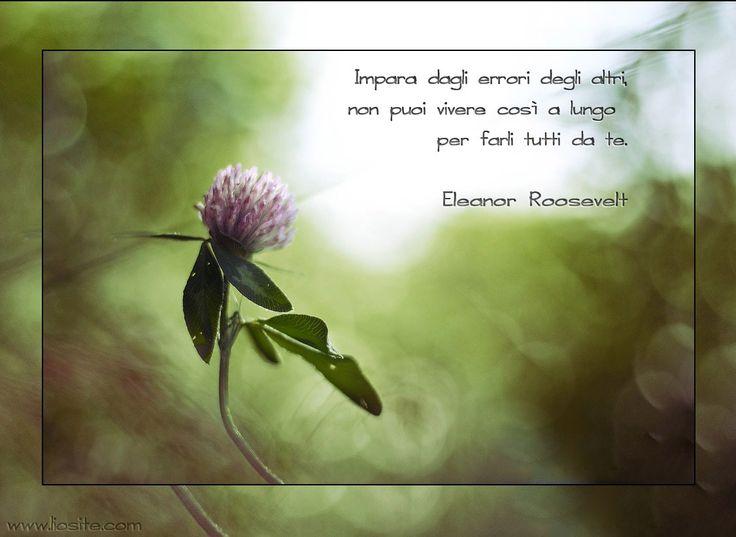 Questo si chiama essere saggi ... ma io ce l'ho messa tutta per sperimentare in prima persona ;) Impara dagli errori degli altri, non puoi vivere così a lungo per farli tutti da te. Eleanor Roosevelt #eleanorroosevelt, #errori, #imparare, #fotografia, #graphtag, #italiano, #perledisaggezza,