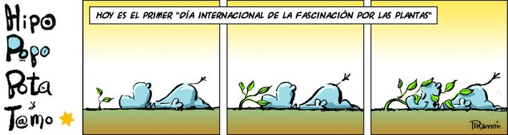 """Hehehehehehe: """"Today's the 1st 'International Day on Fascination for Plants'"""""""