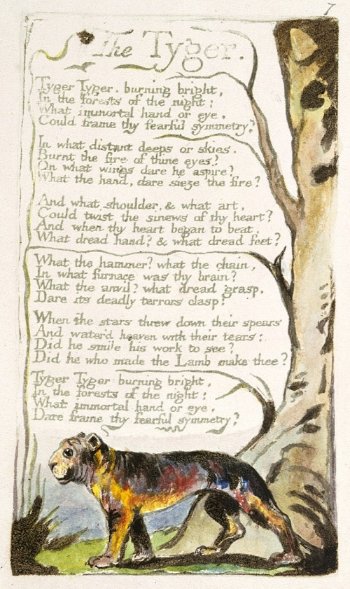 """closer reading on william blake s tyger In an appendix, the essay places blake's verbal and visual media into a musical  context  is """"the tyger"""" a tribute to a creator who accommodates both the   something unworthy of adult attention (though a subsequent close reading of the ."""