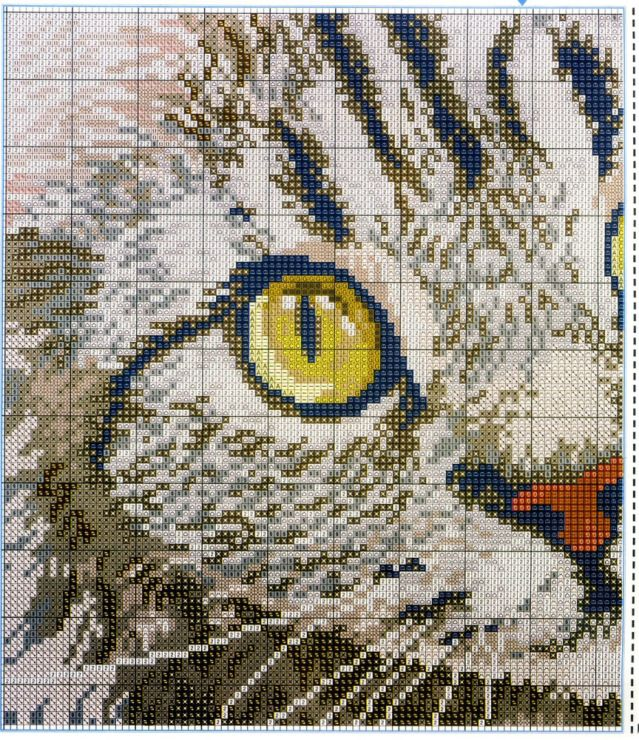 cute cat face- click on the pic and it will take you to the website where you will find all the charts and things you will need
