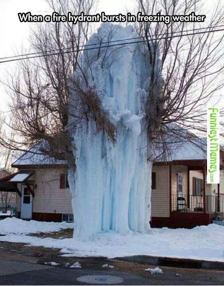 Looks like they need a tree surgeon and a Master Plumber. If they get really bad off they may need a roofer. That tree cannot support all that ice. As soon as it arrives at 32° the ice will start to weaken and the tree will snap.