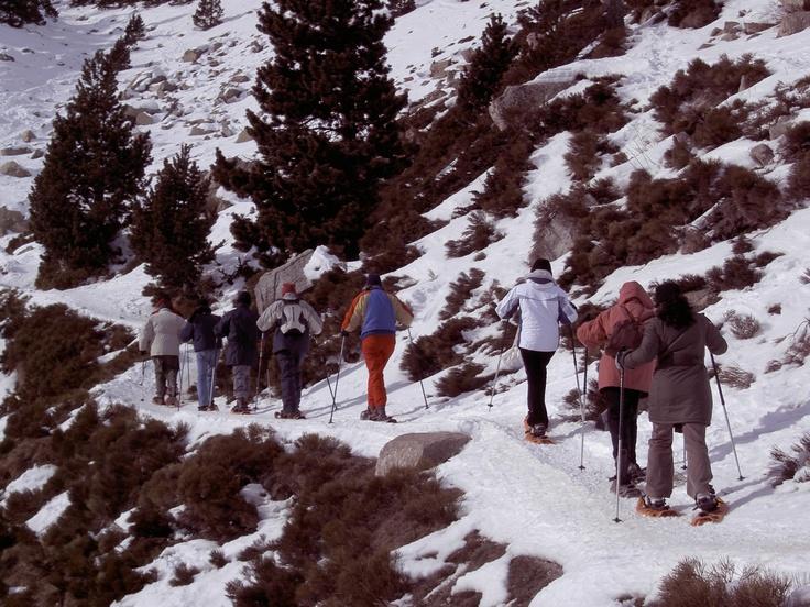 Escapa't a la neu