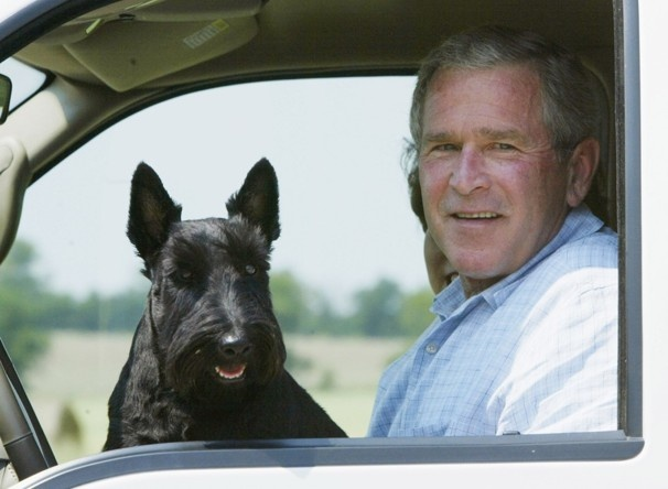 George W. Bush's approval rating just hit a 7-year high. Here's how.