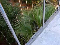 Image result for stainless steel pool fencing
