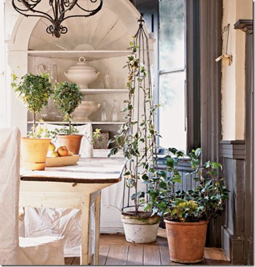 All in the Detail: create a beautiful ivy topiary