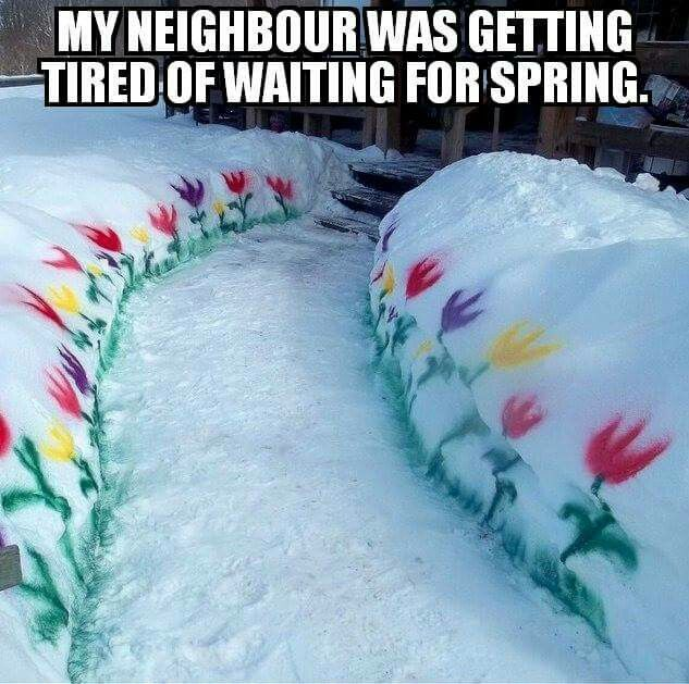 My neighbour was getting tired of waiting for spring.