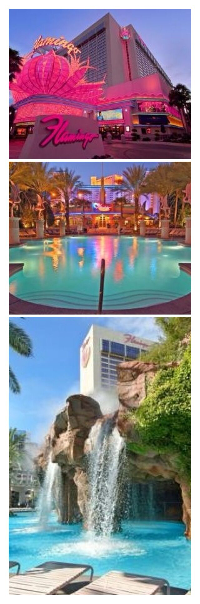The Flamingo Hotel - Las Vegas Strip Nevada | House of Beccaria#