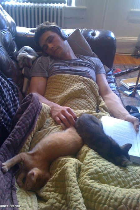 James Franco Twitter-James Franco Tweets A Pic Of Himself Sleeping With Cats