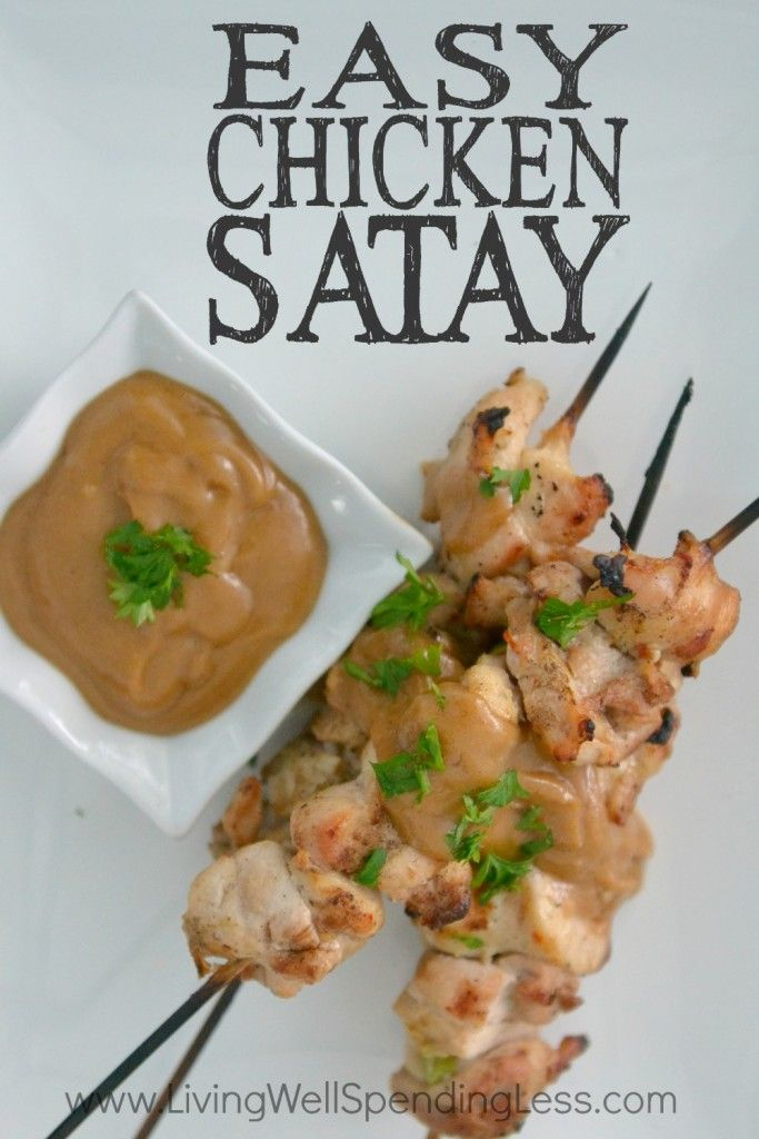 Easy Chicken Satay   10 Meals in an Hour   Freezer Cooking   Main Course Meat   Chicken Recipes