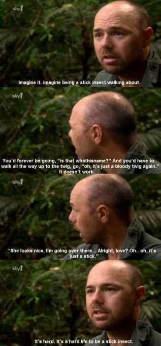 We just saw this episode last night!! So funny!! - Karl Pilkington on how hard it is to be a stick insect.