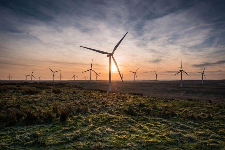 【專文】推動離岸風力發電,漁政機關是關鍵