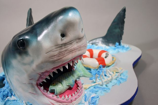 shark birthday cake 41 best images about shark cake on 7317