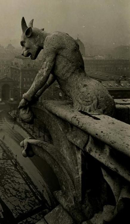 GargolaHalloween Parties, Vintage Photos, Notredame, Paris France, Parties Invitations, Gargoyles, Old Photos, Weeping Angels, Notre Dame Paris