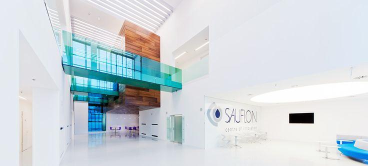 Sauflon Centre of Innovation / Földes Architects / #centre #innovation #glass #reflection #interior #bridge #passage
