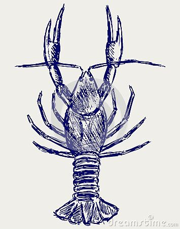 how to draw a crawfish