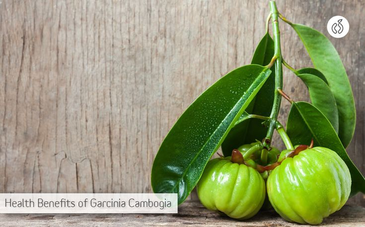 Today, I'll discuss the health benefits of #Garcinia_Cambogia, a relatively unknown fruit that holds potential to become your favourite addition to your diet. http://www.healthexcellence.net/health-benefits-of-garcinia-cambogia/