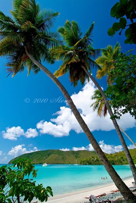 Big Maho Bay Beach. Maho Bay, St John. Virgin Islands National Park by Steve Simonsen