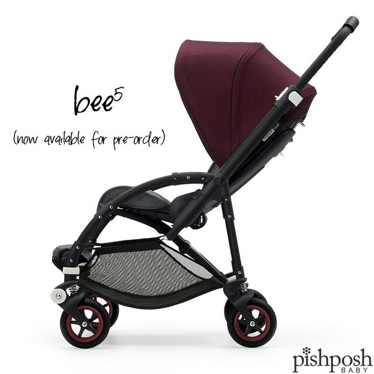 Introducing the Bugaboo Bee⁵! With more color and fabric options than ever before, this is a lightweight stroller that you can truly make your own. Choose from 2 frames, 6 seat fabrics, 11 canopies, 3 handlebar finishes, and 2 wheel colors! Available for pre-order on our site - arrives in early March.  . Questions? Call us - we're super nice  877-PISH-POSH.  http://www.pishposhbaby.com/bugaboo-bee5.html
