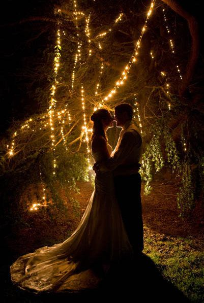 String fairy lights through the trees for a truly magical wedding | Vibrant Photography