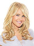 Hair2wear Christie Brinkley Collection 16 Inch Clip-In Hair Extension review